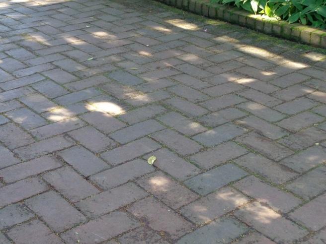 0footprints.jpg